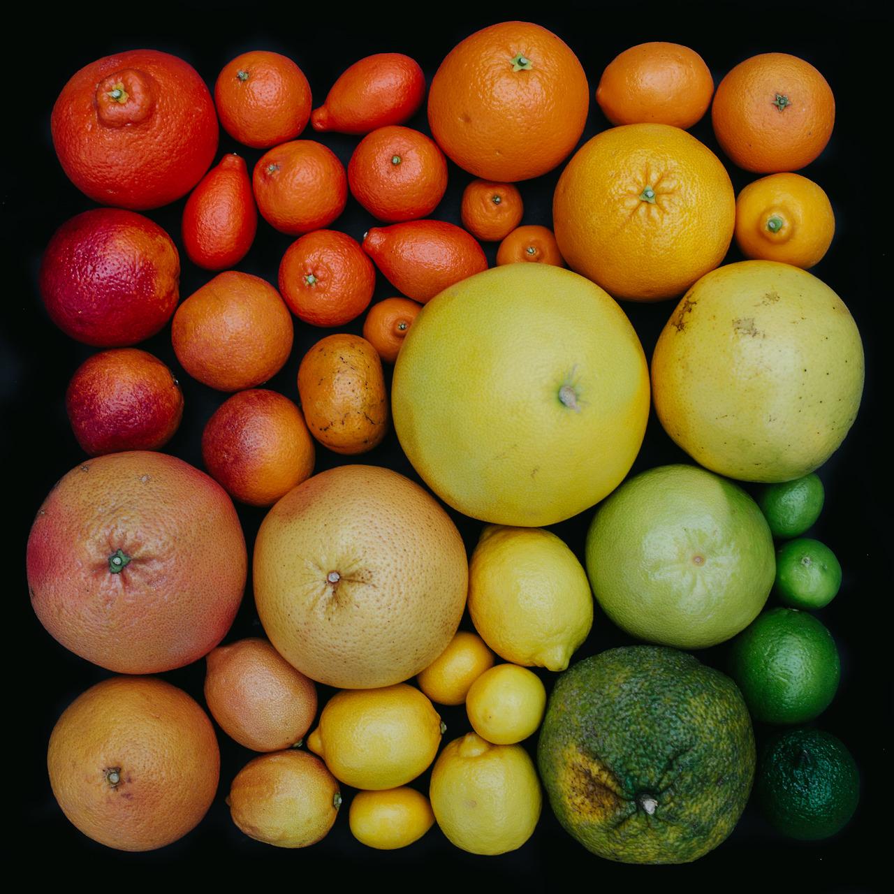 emily-blincoe-3-photos-instantanees-agrumes-oranges-pmplemousse-citron