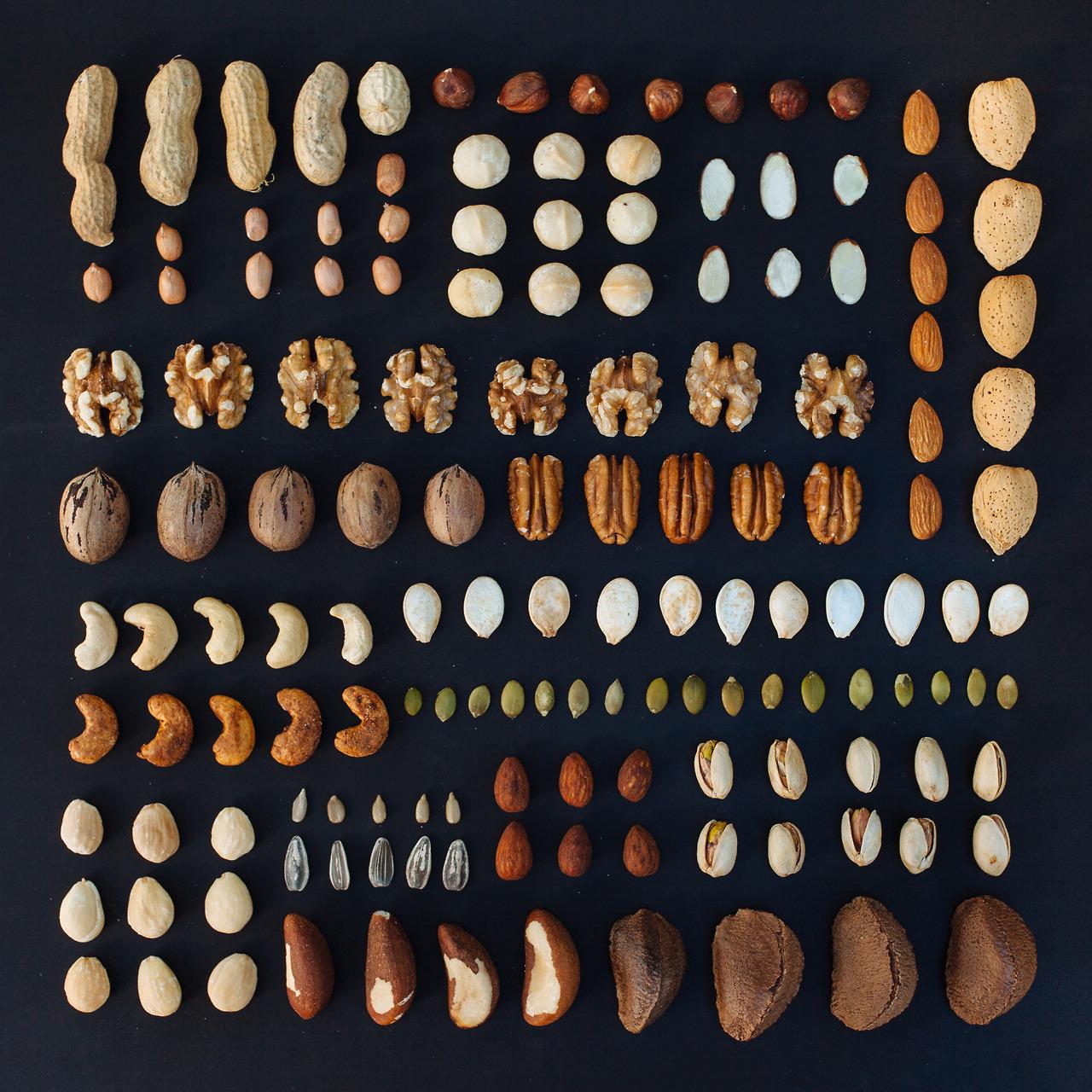 emily-blincoe-8-photos-instantanees-noix-noisettes-cacahuetes