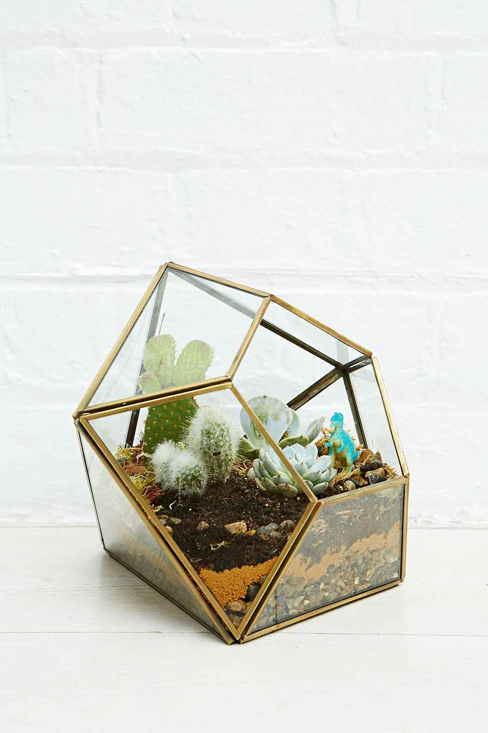 terrarium en verre geometrique dore deco interieure plante verte cactus. Black Bedroom Furniture Sets. Home Design Ideas