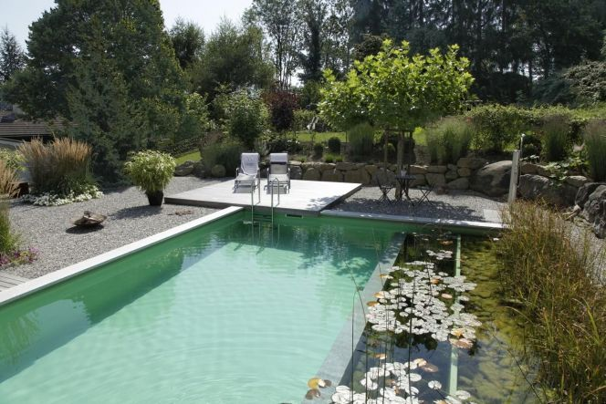 Piscine naturelle design transat plantes aquatiques for Transat terrasse design