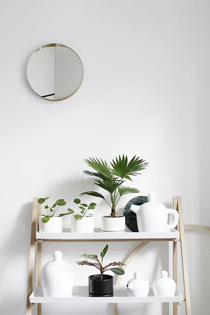meuble bois etagere salle bains toute blanche plantes grasses. Black Bedroom Furniture Sets. Home Design Ideas