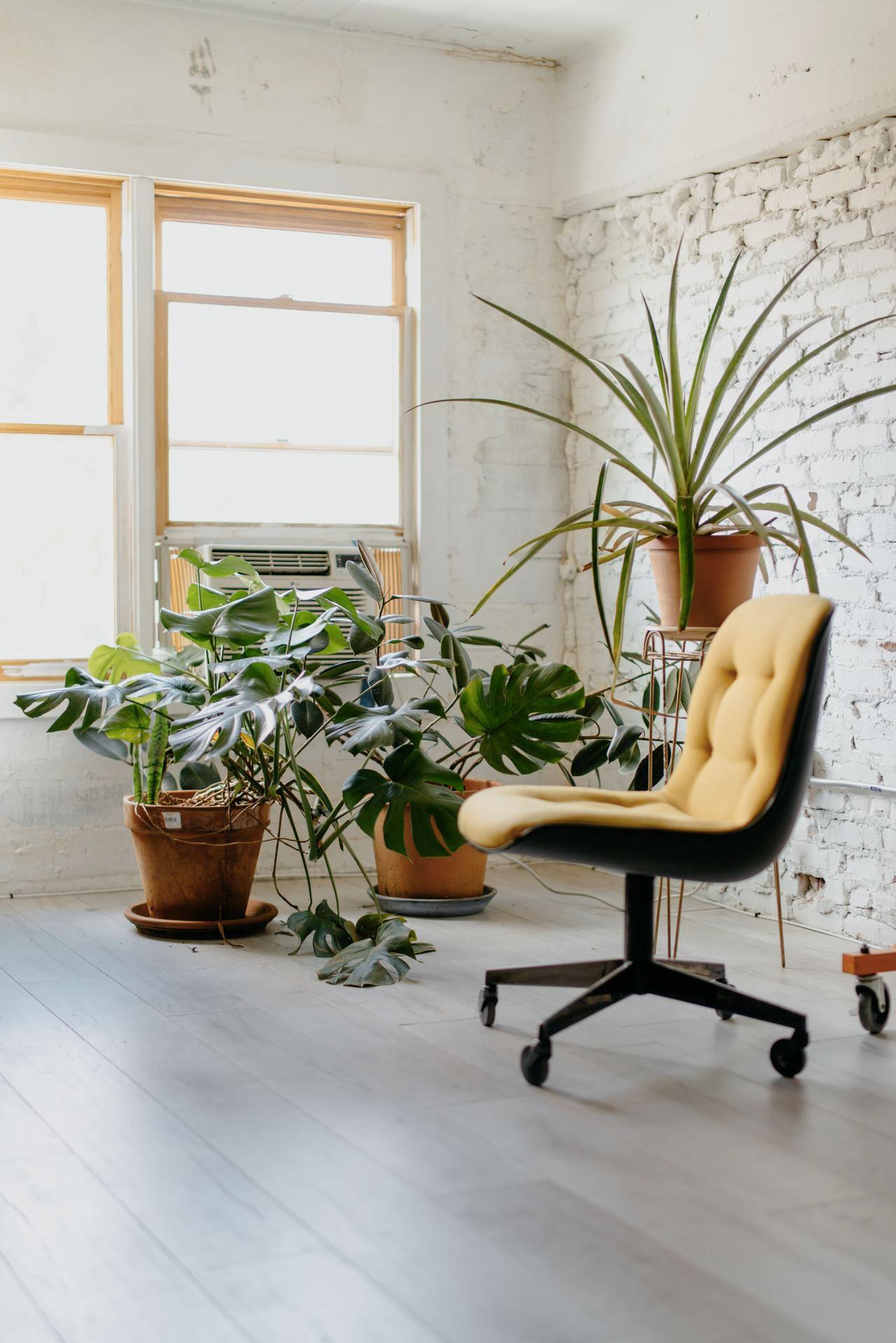 chaise-bureau-design-jaune